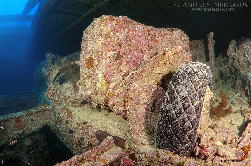 Фотография затонувшее судно 'ss thistlegorm' . красное море .